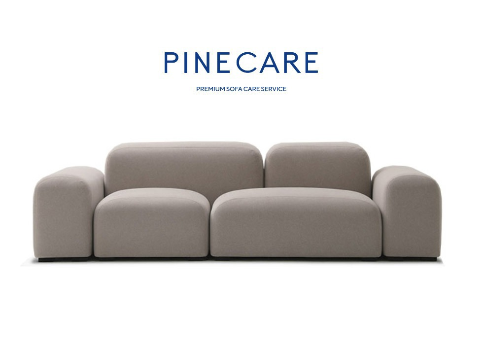 Pinecare +  Pebble set 잭슨카멜레온